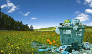 10 Harmful Effects of Plastic Bags on The Environment.